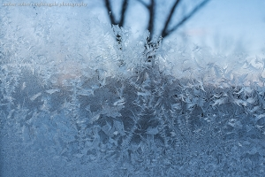 Through and Into the Frost