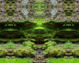 Emerald Envisioning